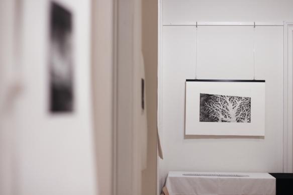 Vienna, Austria, Gallery of Croatian center in Vienna